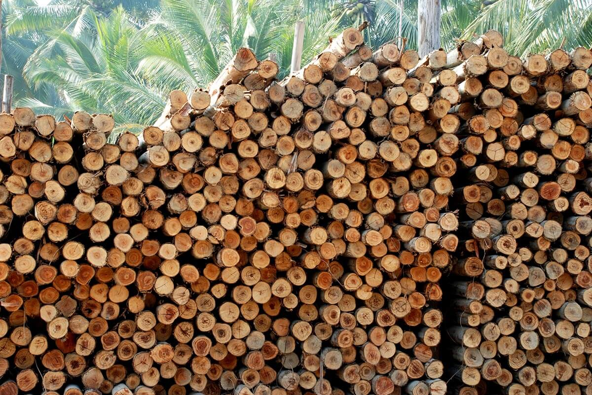 Pulpwood and fuelwood