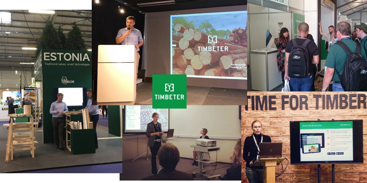 7 достижений Timbeter в 2018: новые рынки, улучшенное обнаружение, больше пользователей