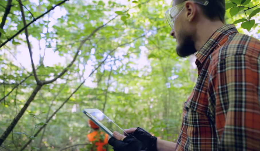 Poprawa bezpieczeństwa pracy w sektorze leśnym za pomocą systemu Timbeter