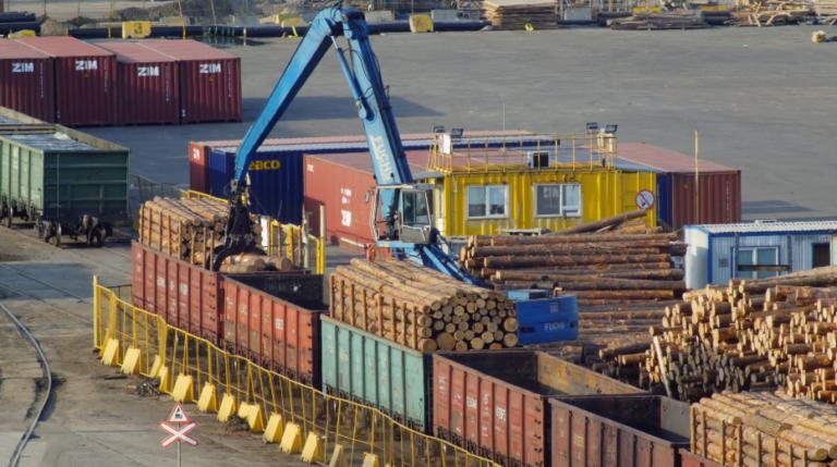 Georgia Exports: «Использование Timbeter значительно сокращает расходы»