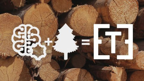 What is bringing digitization to the forestry sector?