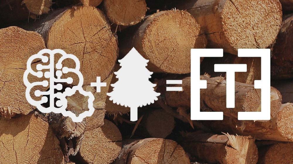 O que está trazendo soluções digitais ao setor florestal?