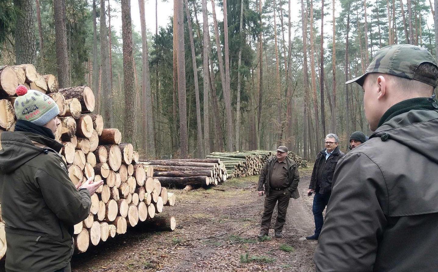 El Holding Nacional de Bosques Estatales de Polonia en cooperación con Timbeter