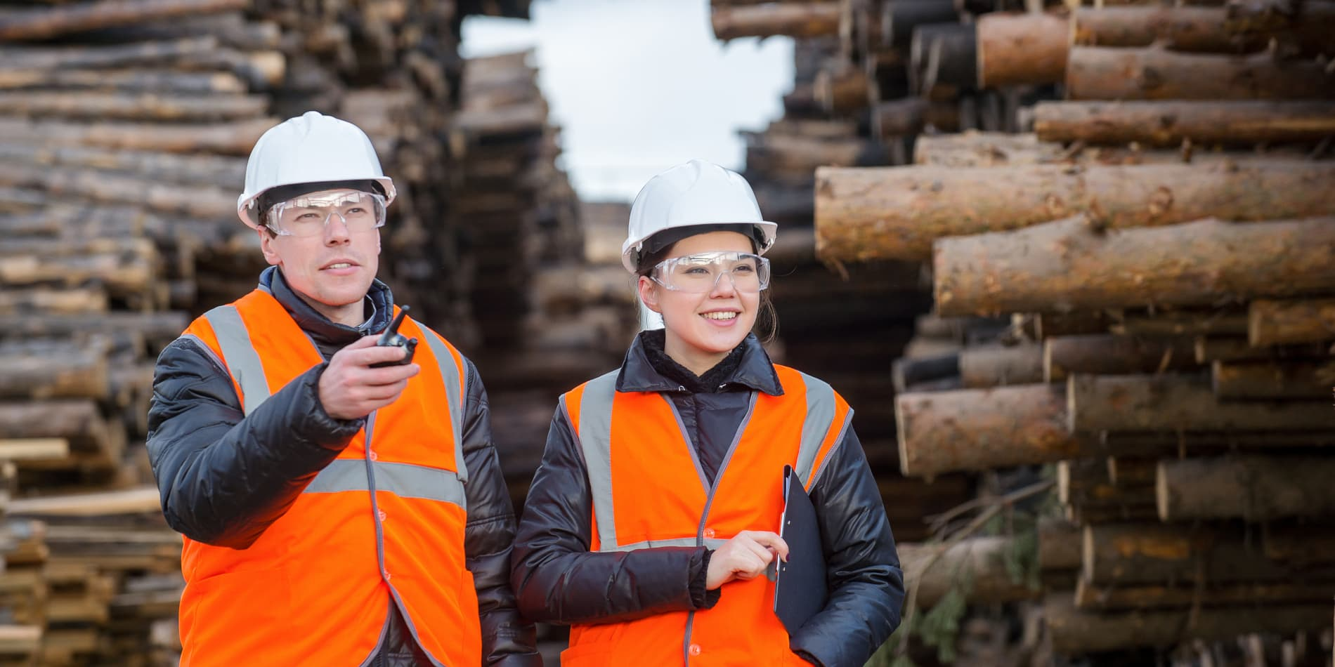 Empresas forestales
